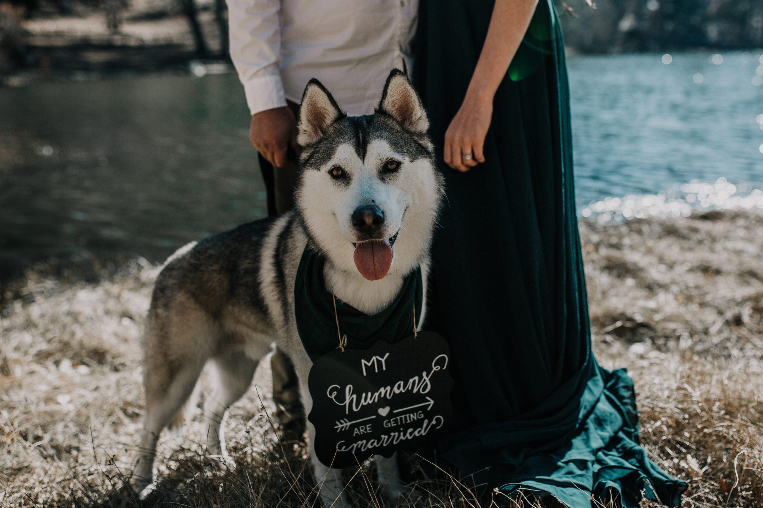 Jenks Lake Intimate Romantic Engagement